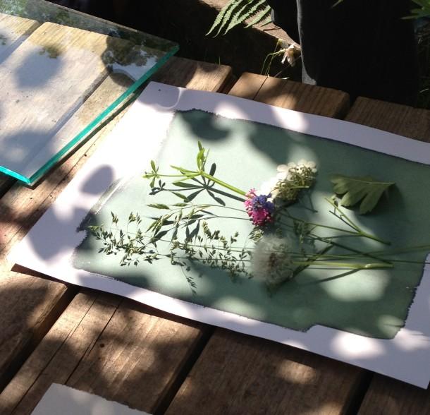 Botanicalprints2