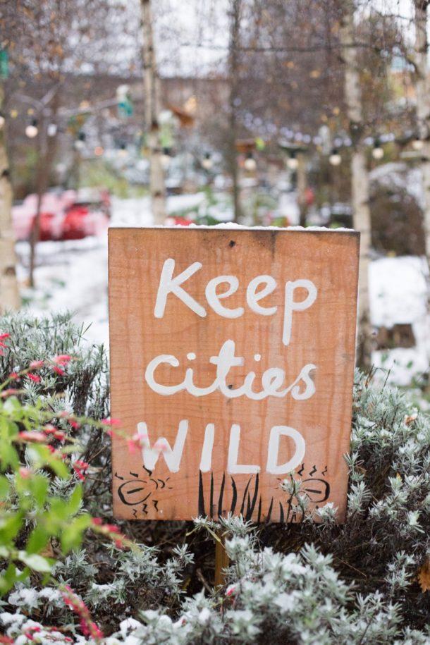 Keepcitieswild (1)